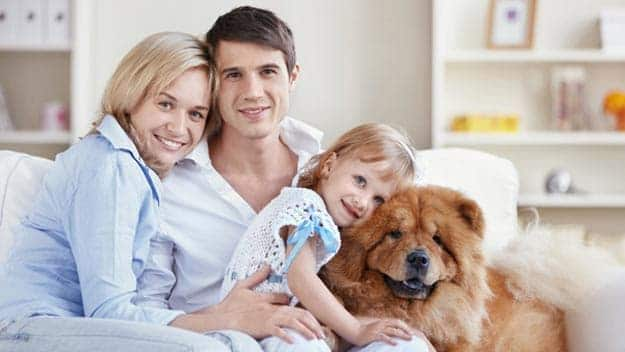Wills & Trusts dog-young-family Direct Wills Brentford